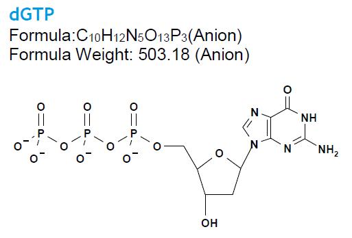 nucleotide structure dGTP