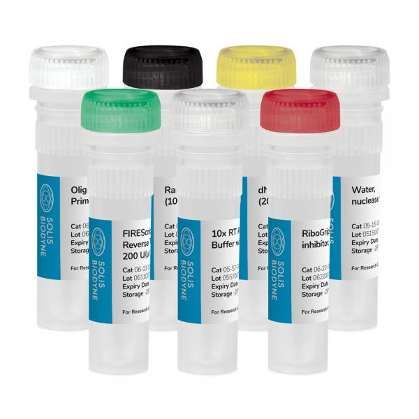 FIREScript® RT cDNA synthesis KIT