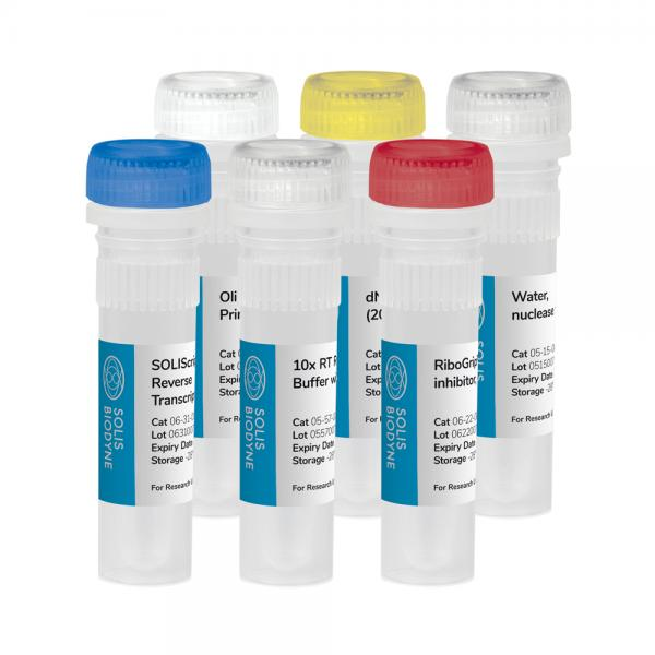SOLIScript® RT cDNA synthesis KIT