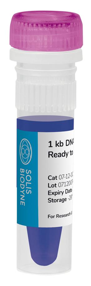 1 kb DNA Ladder Ready to Load
